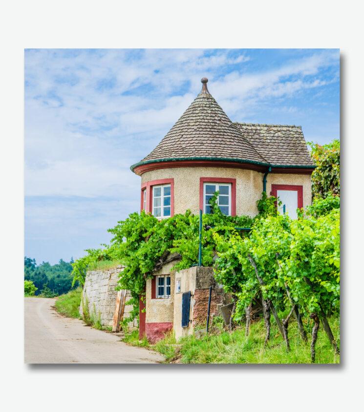Weinberg Häuschen bei Schorndorf