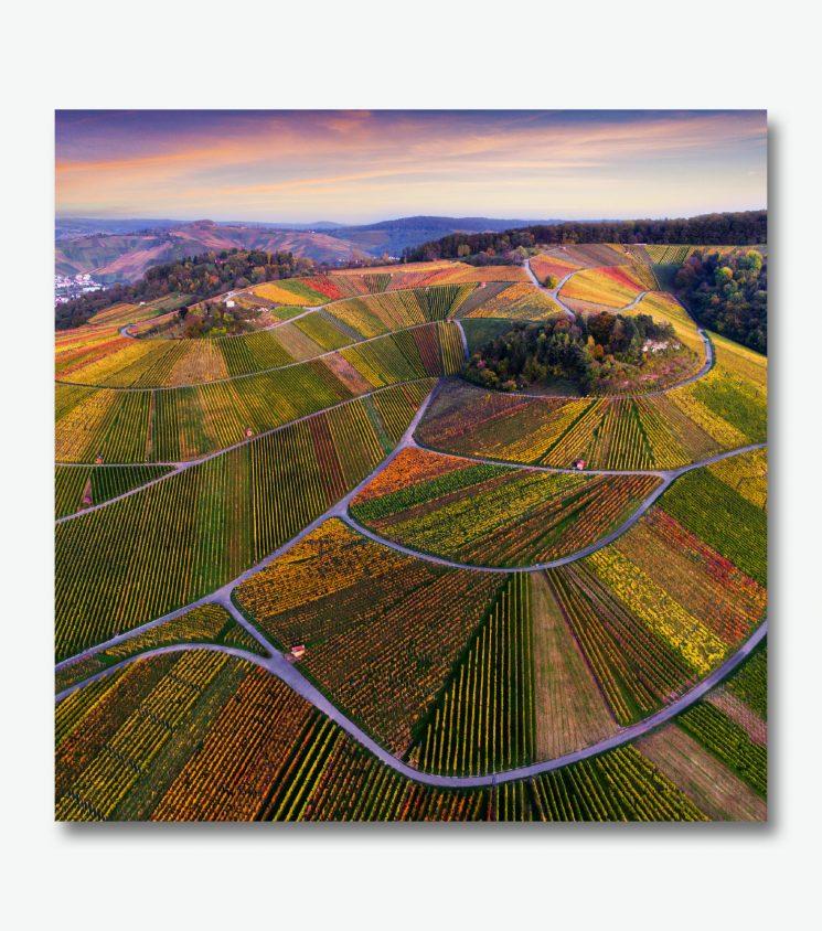 Drohnenaufnahme der Weinberge im Remstal